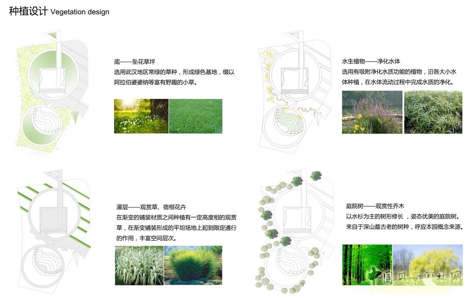 庭院植物配置立面图